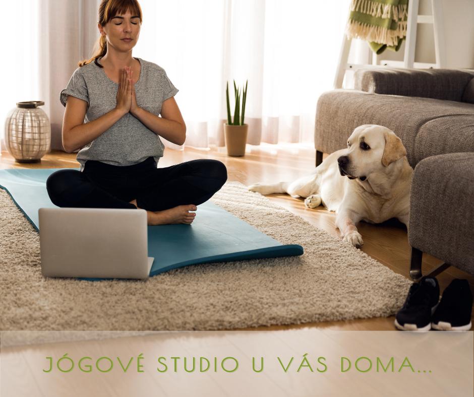 Online hatha jóga